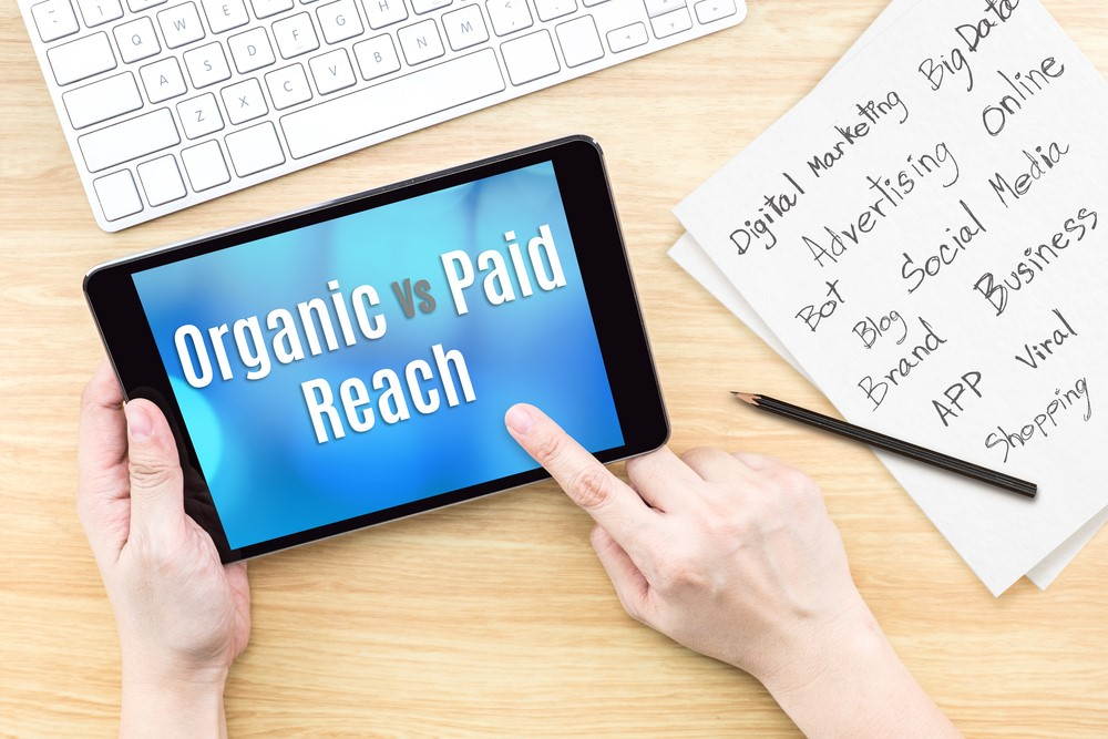 Dominating Your Market With Organic And Paid Leads